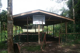 A paddock which was built in Jeli to prevent tiger attacks on livestock