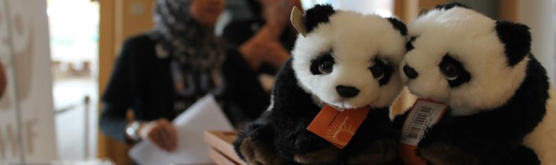 © WWF-Malaysia  /  Lau chin fong