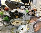 Aquaculture Improvement Project (AIP) fish were sold by Goh Siong Tee (GST) Group during the WWF-Malaysia's Sustainable Seafood Festival 2017.