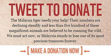 / ©: WWF-Malaysia