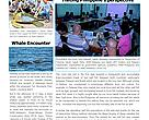 WWF-Malaysia Marine Programme Newsletter (Apr - July 2012)