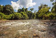 © WWF-Malaysia/Mazidi Ghani