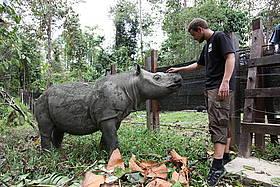 © WWF-Malaysia / Rahana Husin