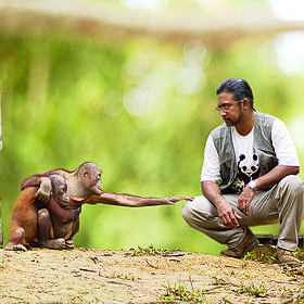 © WWF-Malaysia / Lee Mee See